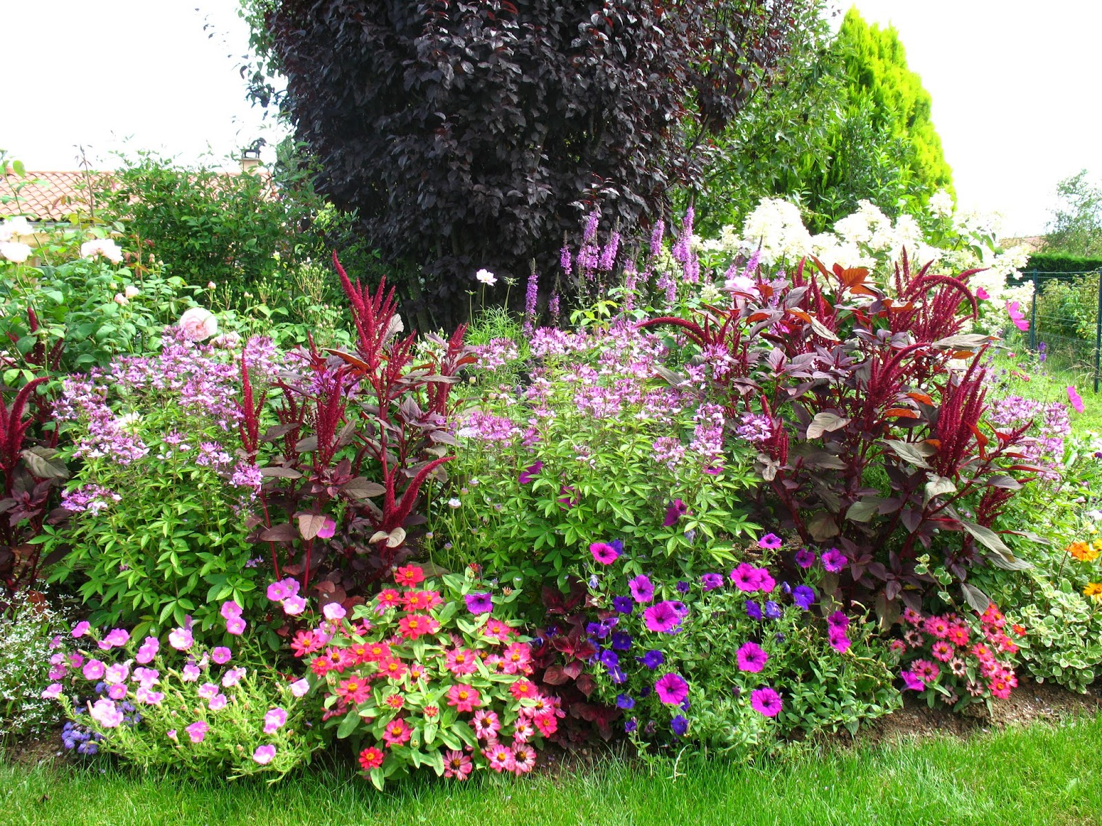 roses du jardin ch neland concours maisons fleuries. Black Bedroom Furniture Sets. Home Design Ideas