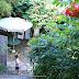 法國|南法最美小鎮盧馬罕的住宿-La Maison Rose