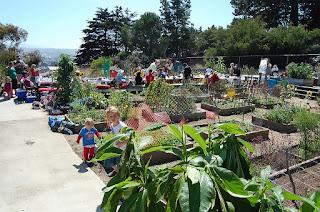 Slow Foods Community Garden San Francisco - https://www.flickr.com/photos/kevinkrejci/3899032980