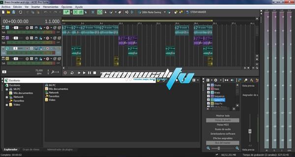 MAGIX ACID Pro Suite Versión 10.0.2.20 Full Español