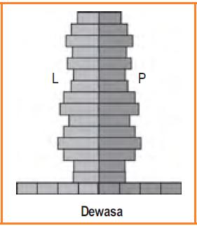 Piramida penduduk dewasa (Stationer)