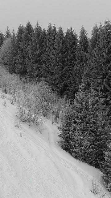 Zimowy stok Malino Brdo (Rużomberok)