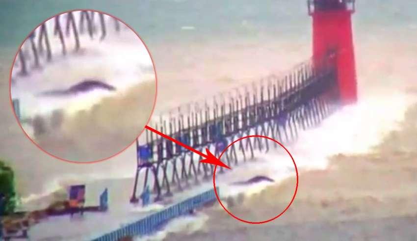 Ένα μυστηριώδες πλάσμα εμφανίζεται στη λίμνη Μίτσιγκαν κατά τη διάρκεια μιας καταιγίδας (vid)