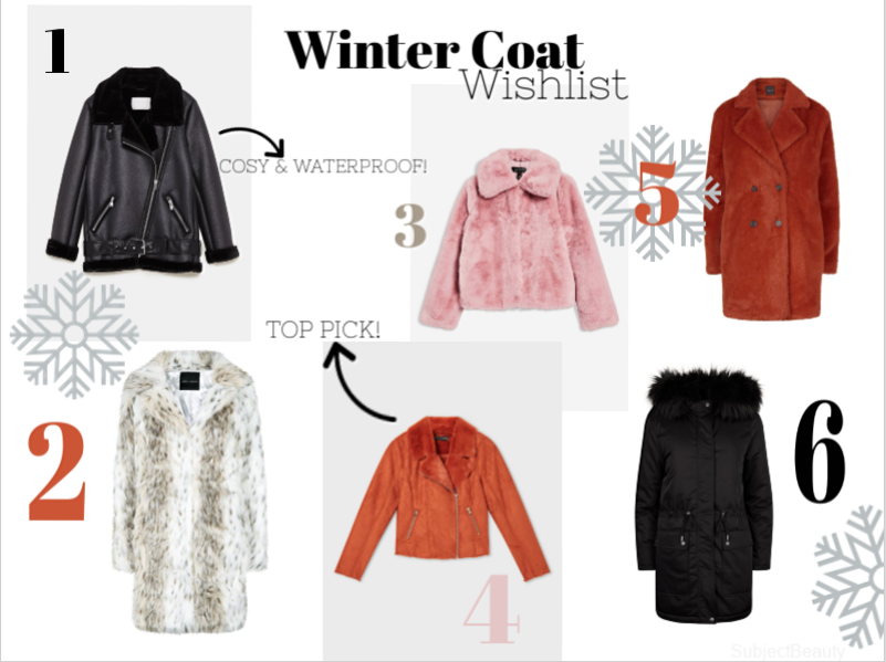 Winter Coat Wishlist - Winter Coats and Jackets - Topshop,Zara, Newlook, Miss Selfridge