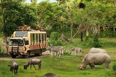 Nomor Call Center Reservasi Bali Safari Marine Park