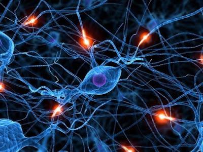 Материализирането на събитията във вашия живот започва на квантово ниво - Джо Диспенза