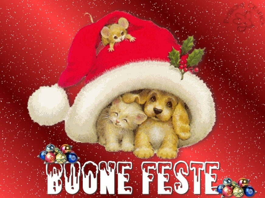 Come passare un Felice e Sereno Natale da Single