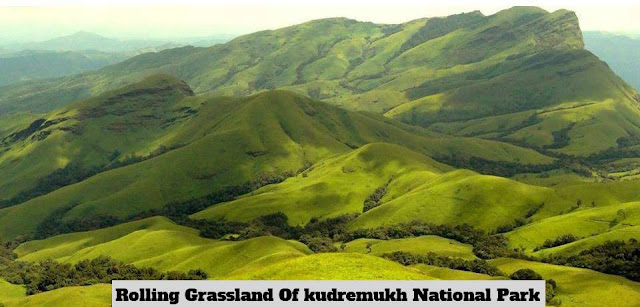 Kudremukh-national-park