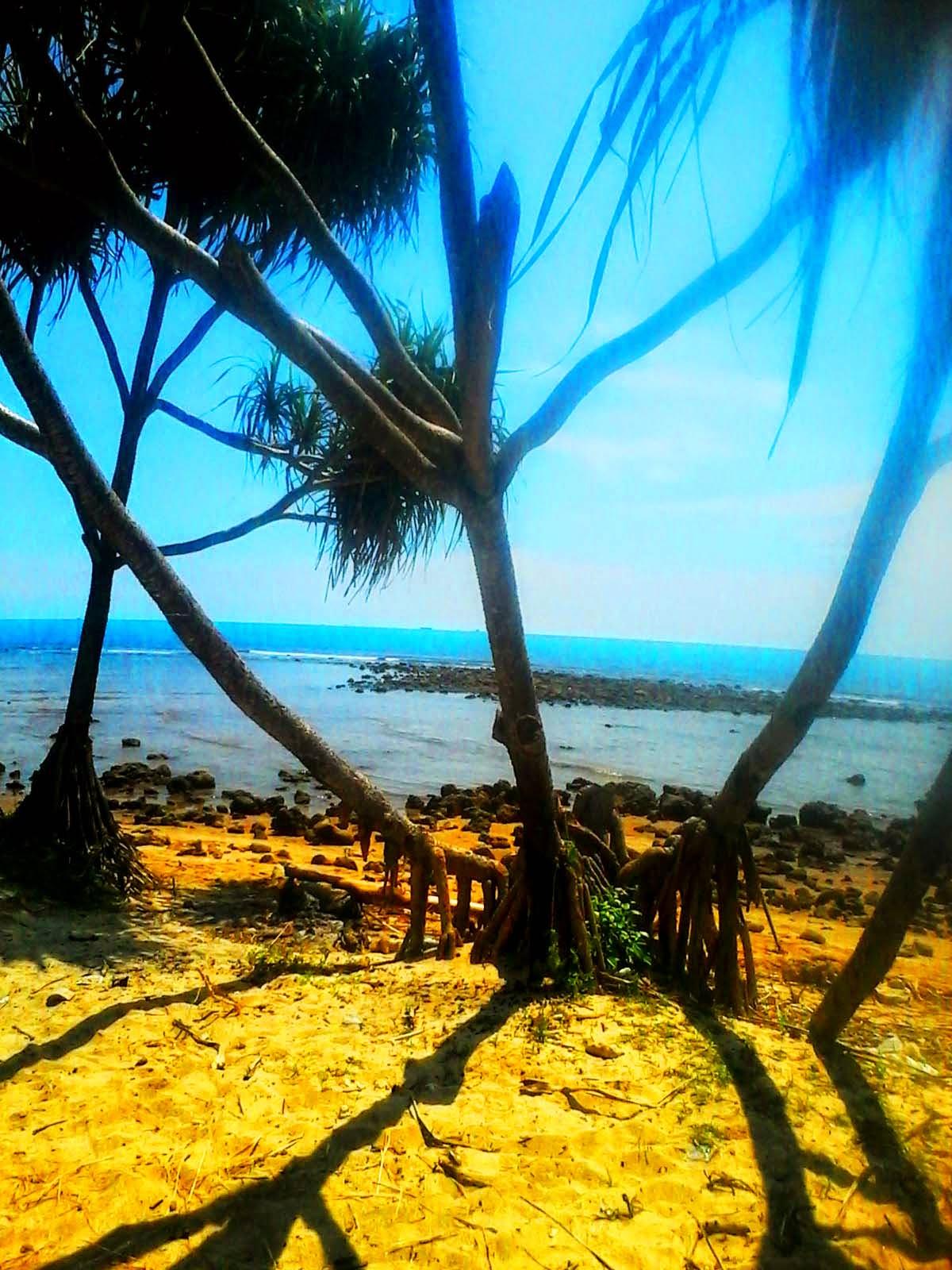 Pantai Mpu Rancak Jepara