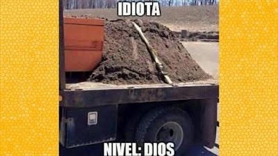 Idiotas de nivel experto