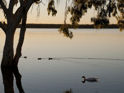 Lake Elphinstone, Queensland.