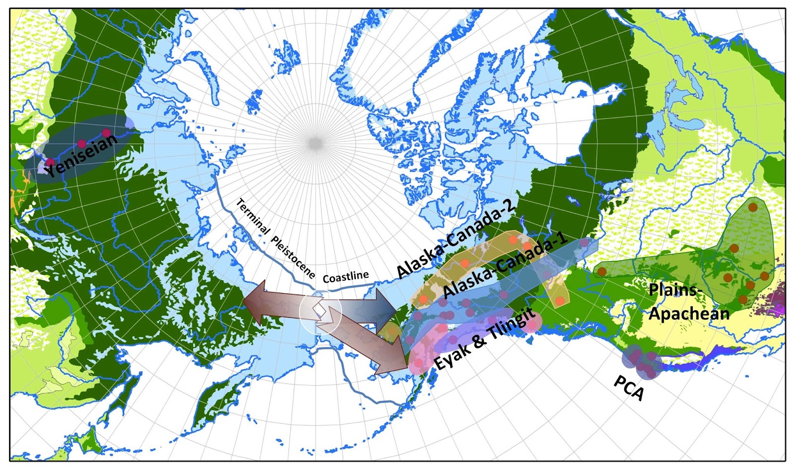 The merger of North America, Japan, Russian lands