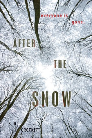 RaeLynn Writes!: After the Snow Book Report