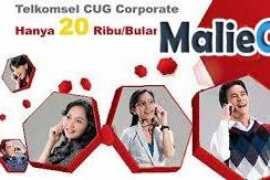 Kelebihan CUG Corporate