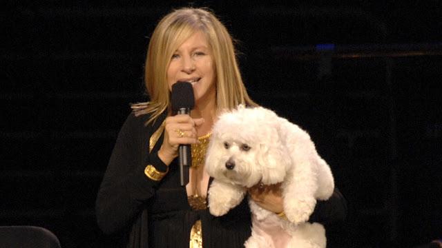 Barbra Streisand revela que clonó dos veces a su amada mascota