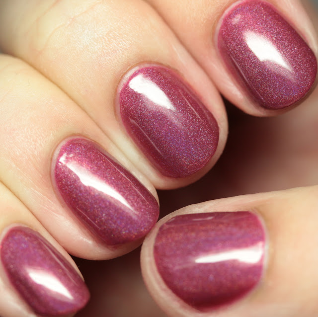 Octopus Party Nail Lacquer Edge of Velveteen