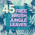 45 Jungle Tropical Leaves Photoshop Brush