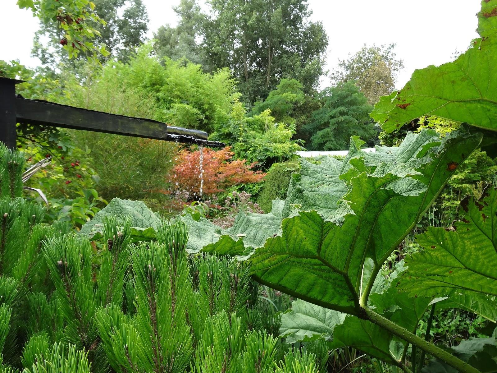 le blog de parcs et jardins de l 39 oise jardin botanique du beau pays marck 62. Black Bedroom Furniture Sets. Home Design Ideas