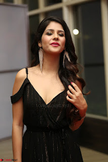 Kashish Vohra at Rogue Movie Audio Launch ~  (47).JPG