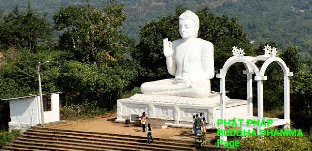 Đạo Phật Nguyên Thủy - Kinh Tăng Chi Bộ - 7 loại Thức trú