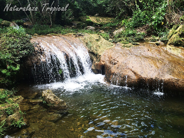 Río tropical presente en Soroa, Artemisa, Cuba