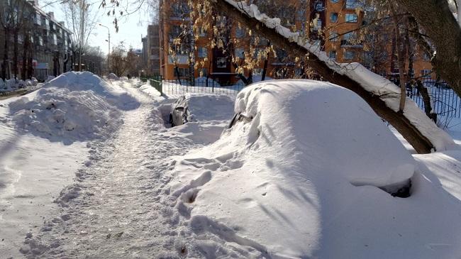 Авто подснежники в Новосибирске