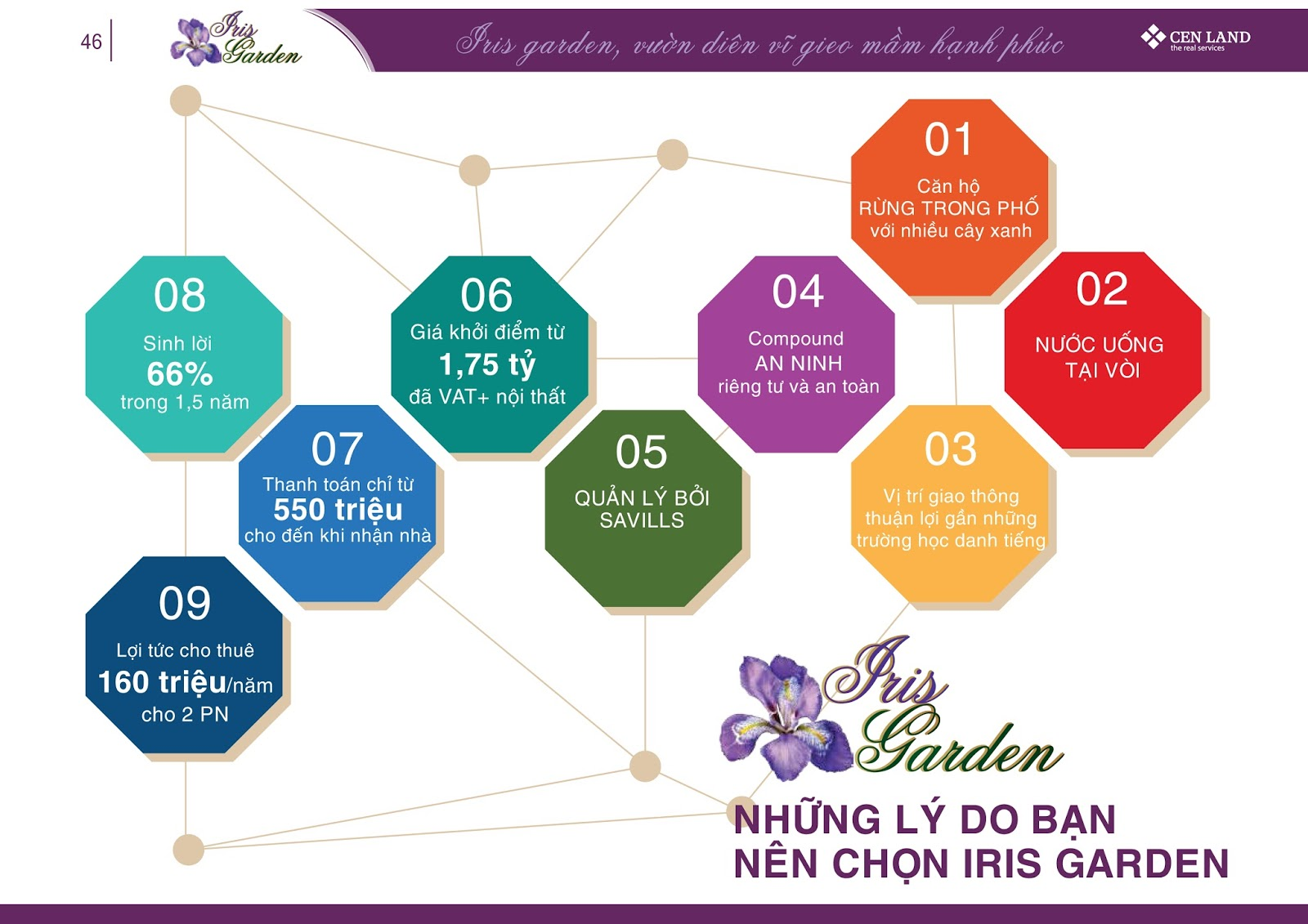 LY-DO-LUA-CHON-IRIS-GARDEN