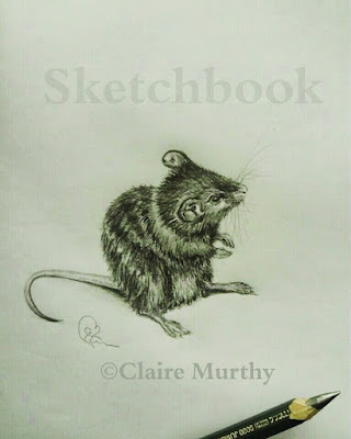 mouse drawing pencil
