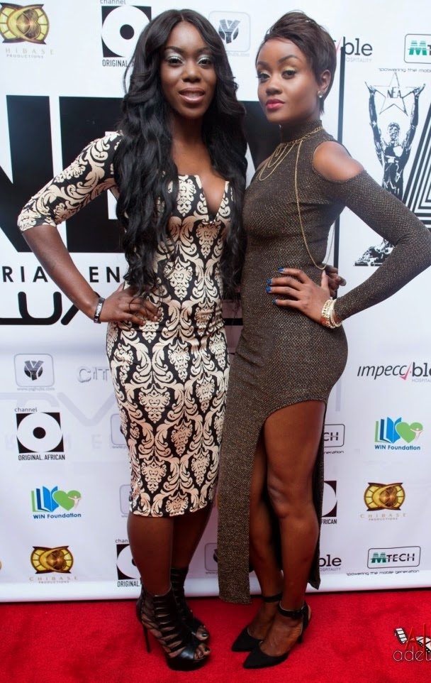 P67A9776 Red carpet photos from 2014 Nigeria Entertainment Awards