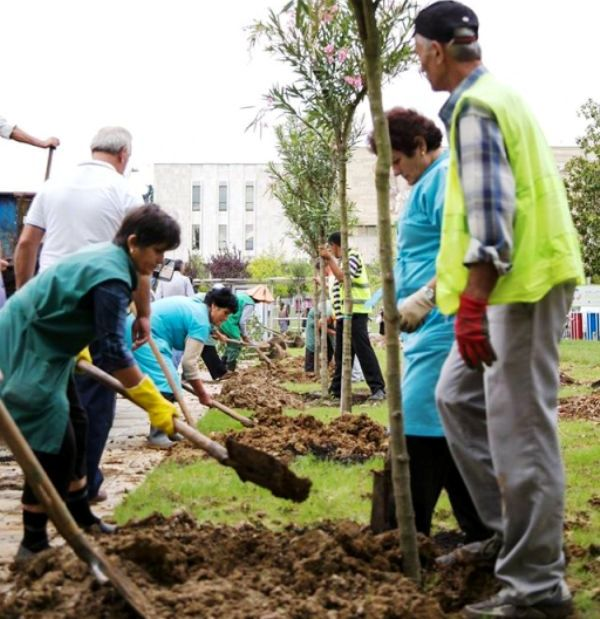 "Today, Tirana Municipality Initiative: ""Sow a Tree"""