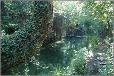 Canal derivado del Río Júcar (Villalba De La Sierra)