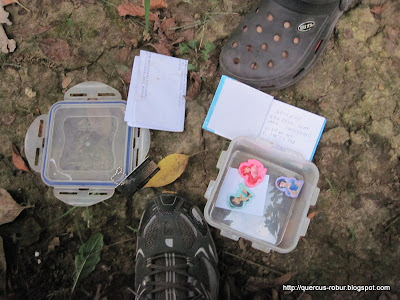 Geocache container in Changzhou