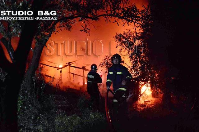 Πυρκαγιά κατέστρεψε διώροφο οίκημα στο Λάλουκα Αργολίδας (βίντεο)