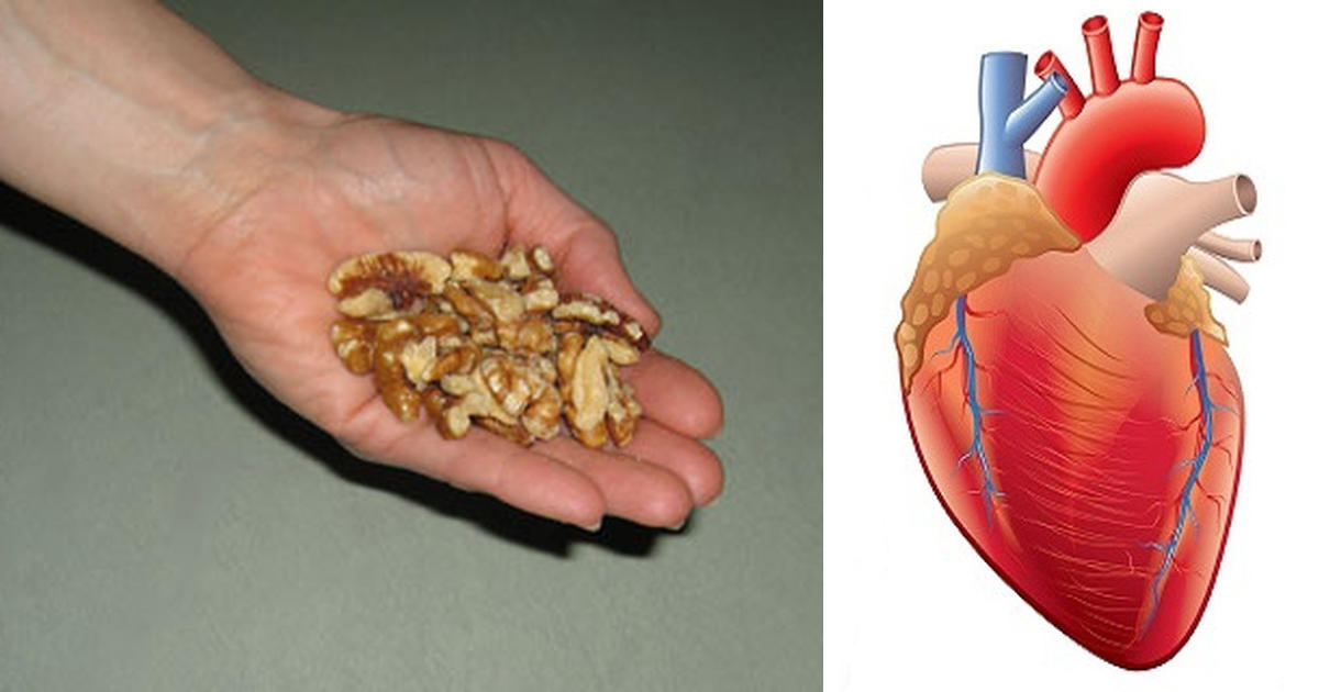 walnut health benefits,Walnut for heart