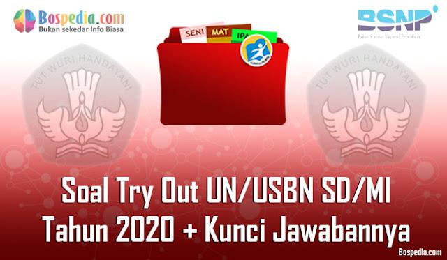 Lengkap - Soal Try Out UN/USBN SD/MI Tahun 2020 Berserta Kunci Jawabannya