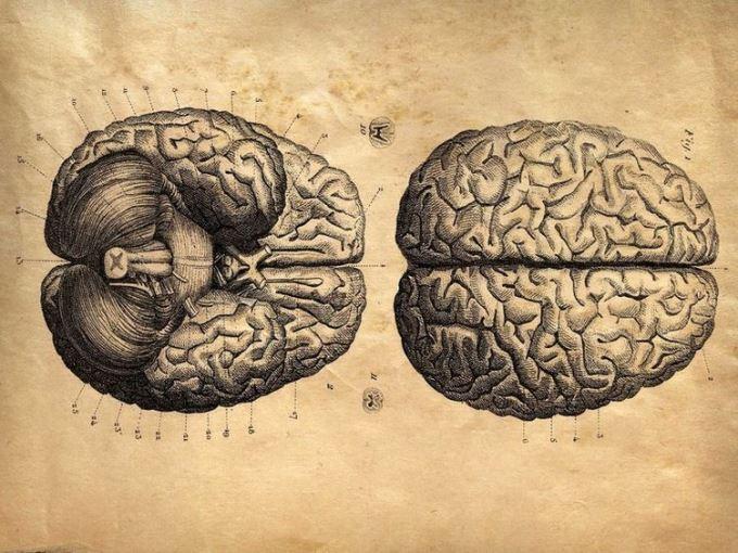 Je me reprogramme le cerveau