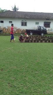 Rumput jepang di perumahan Araya malang tahun 2021  (  pekerjaan terbaru kami )