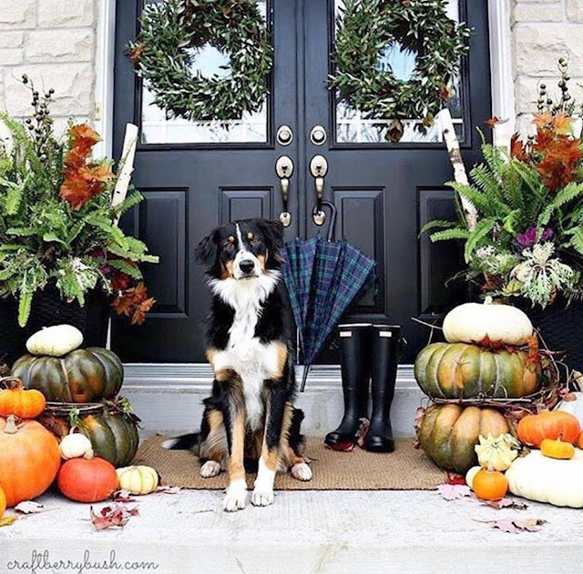http://thestylenest.blogspot.com/2016/10/friday-finds-fall-decor.html