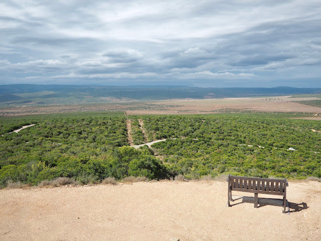 Landscape viewpoint in Addo Elephant National Park, South Africa