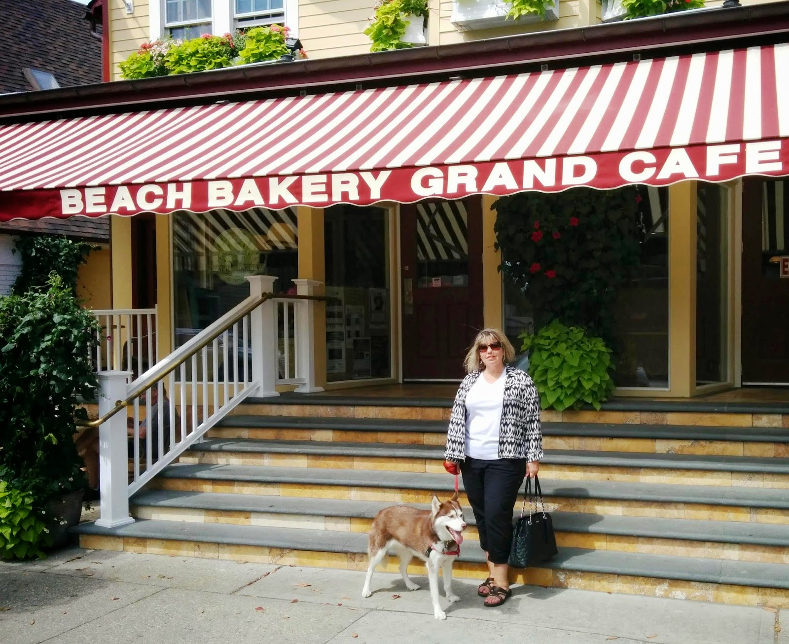 At dog friendly Beach Bakery Grand Cafe in The Hamptons, Long Island NY