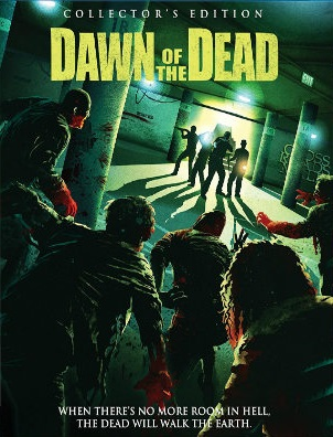 Dawn of The Dead 2004 BRRip 300Mb Hindi Dual Audio 480p