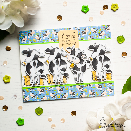 Cow Birthday Card by Zsofia Molnar || Moo Stamp Set and Speech Bubble Die Set by Newton's Nook Designs #newtonsnook #handmade