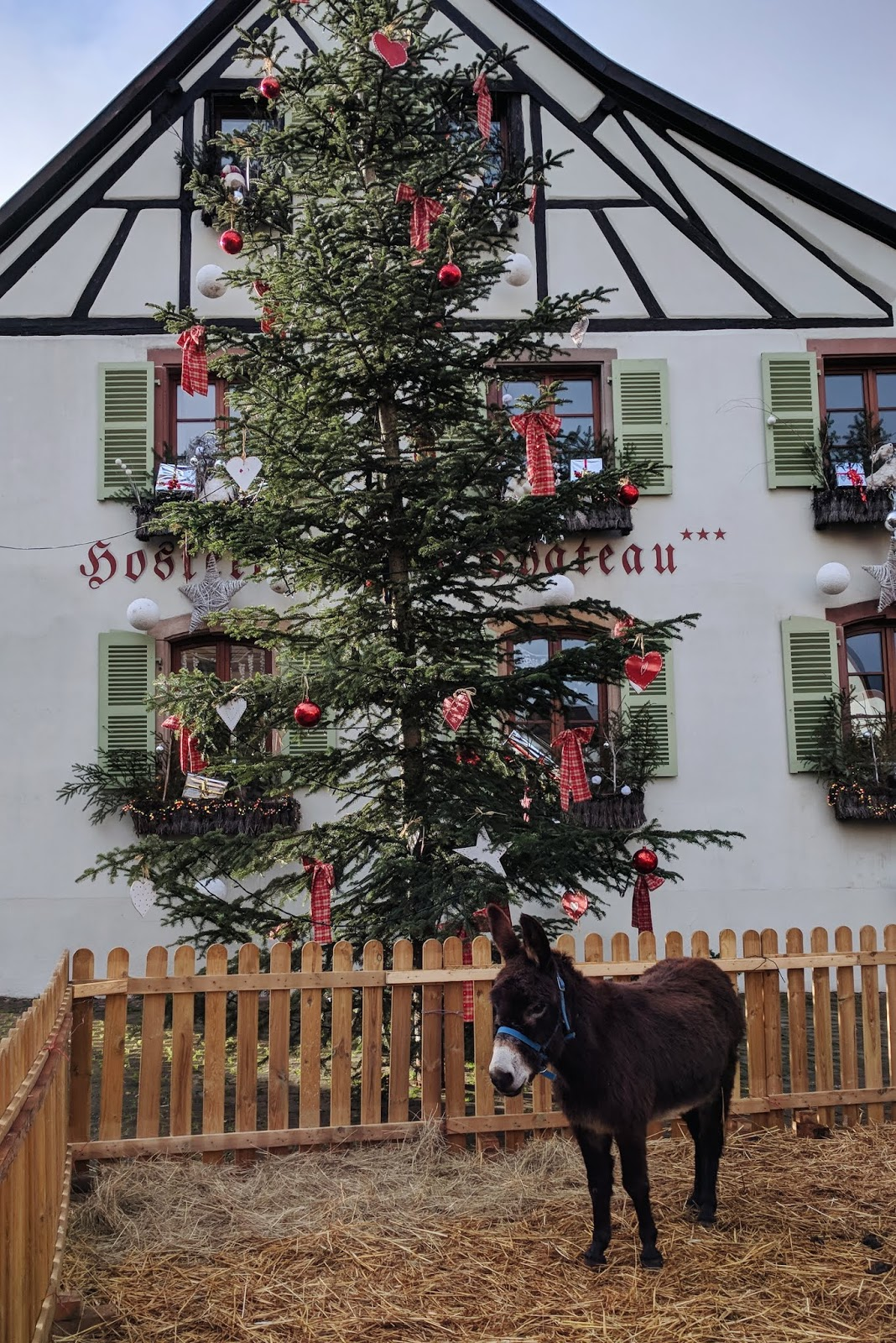 Eguisheim, France | Christmas in Alsace {imperfect idealist}