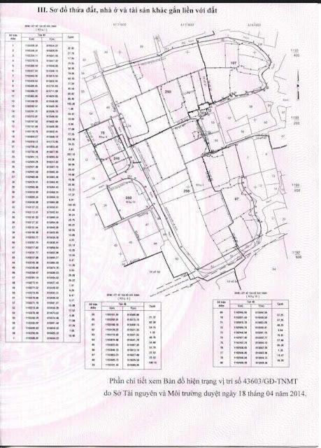 Dự án Thế Minh 21ha tại Phường Phú Hữu, Quận 9