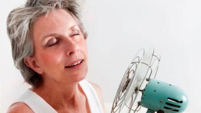 obat menopause tradisional, cara memperlambat datangnya menopause, vitamin untuk wanita menopause, jamu untuk wanita menopause, obat menopause dr boyke, menopause dini bisa sembuh, ramuan tradisional atasi menopause, penyakit menopause pada wanita,