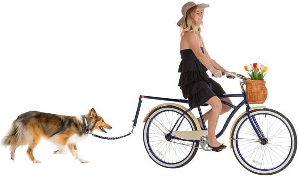 dog-lead-for-bike