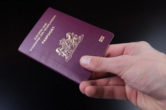 هولندا.. 6000 آلاف سوري سيحصلون على الجنسية هذا العام