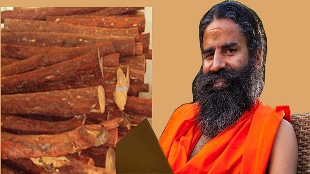 sandal wood of Patanjali Ayurveda