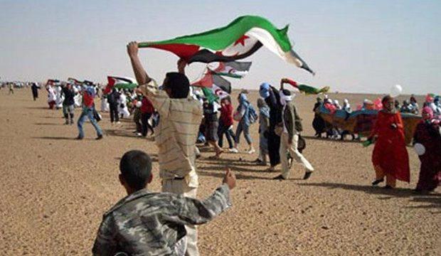 Sahara Occidental. La juventud saharaui, muy formada, pero (casi) sin futuro