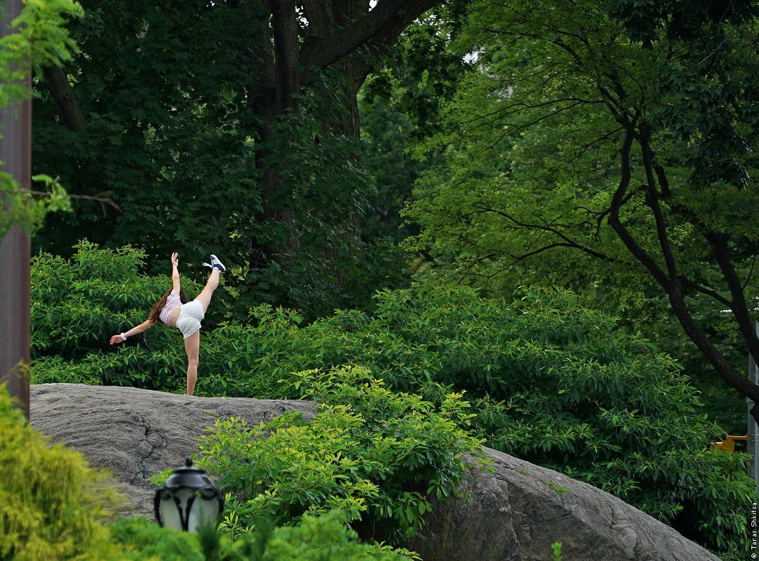 Central Park. Hallett Nature Sanctuary